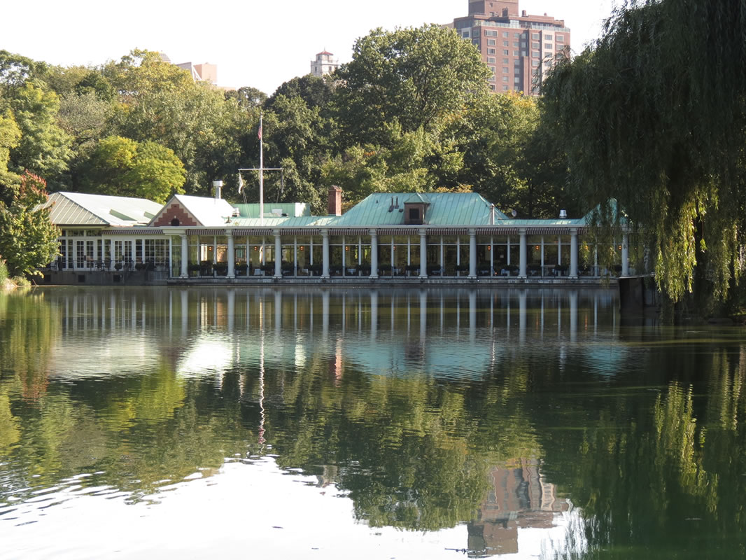 Central Park Reflections: CP01 []