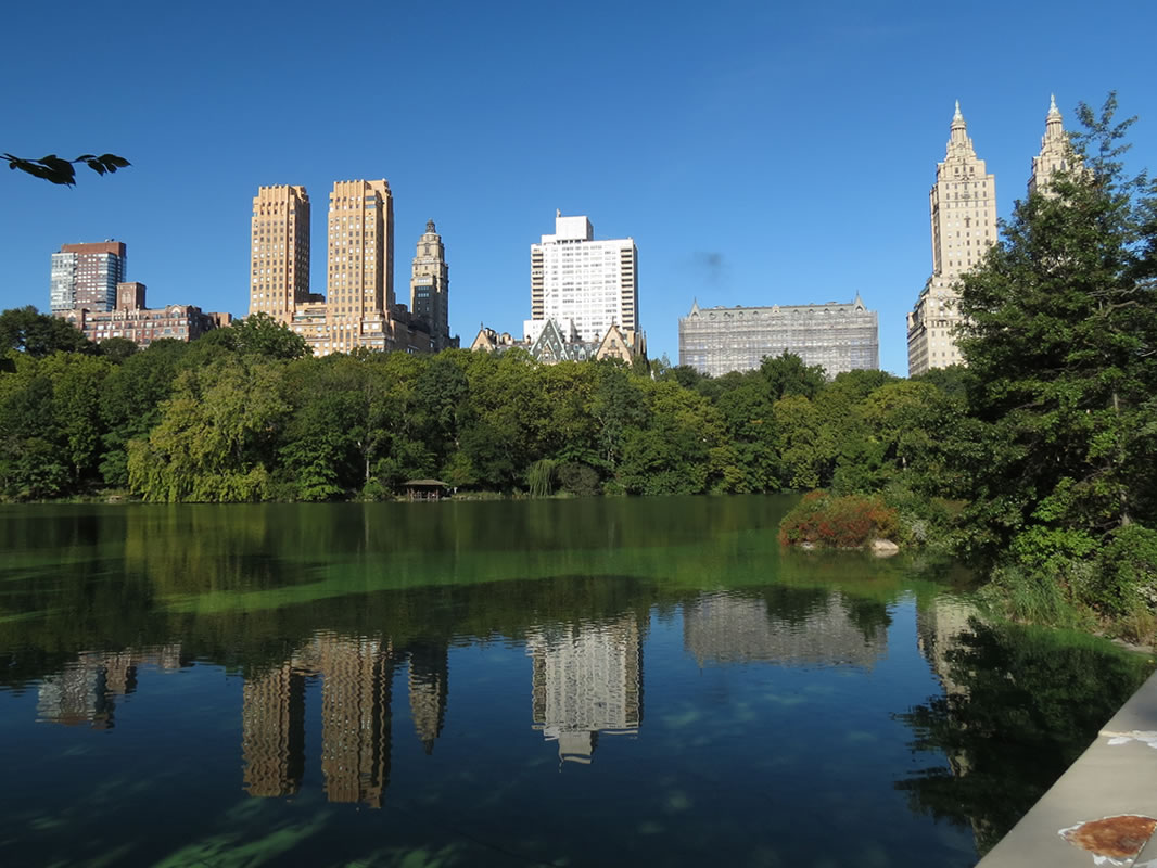 Central Park Reflections: CP02 []