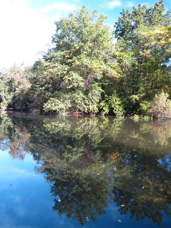 Central Park Reflections: CP21 []