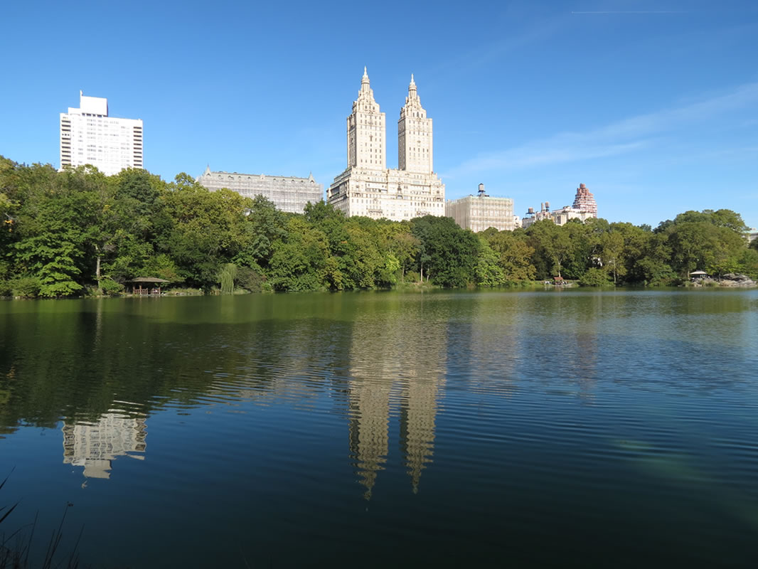 Central Park Reflections: CP04 []