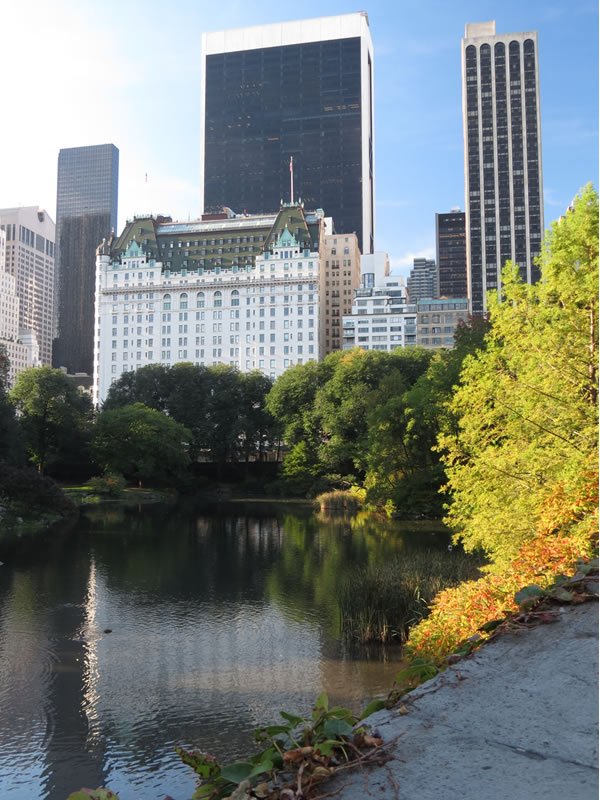 Central Park Reflections: CP22 []